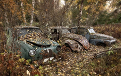 Autumn Fall Leaf Exotic Car Wallpaper The World S Best Photos Of Pv And Volvo Flickr Hive Mind
