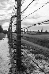 "Auschwitz • <a style=""font-size:0.8em;"" href=""http://www.flickr.com/photos/77968807@N00/8423864490/"" target=""_blank"">View on Flickr</a>"