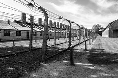 "Auschwitz • <a style=""font-size:0.8em;"" href=""http://www.flickr.com/photos/77968807@N00/8423828292/"" target=""_blank"">View on Flickr</a>"