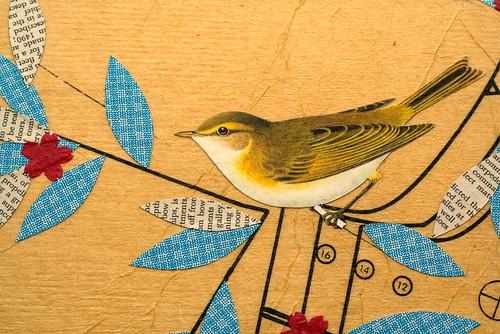 Bird collage-2