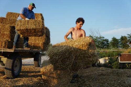Straw Bale House Workshop