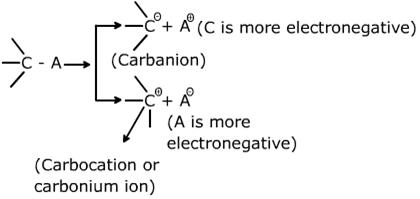 Class 11 Chemistry Notes General Organic Chemistry