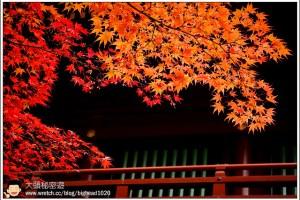 [日本關東楓紅之旅2-1]日光:山內-輪王寺、東照宮