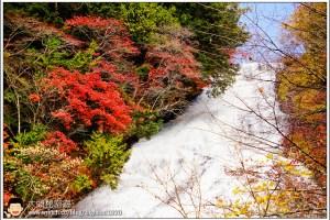 [日本關東楓紅之旅3-2]日光:湯之湖(湯ノ湖)、湯瀑布(湯滝)、湯川