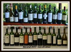 Bacanal+2013+540[1]