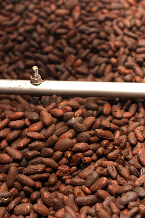 roasting cocoa beans for chocolate