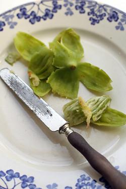 fig skin