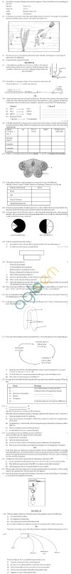 CBSE Board Exam 2013 Sample Question Papers Class XII - Biology