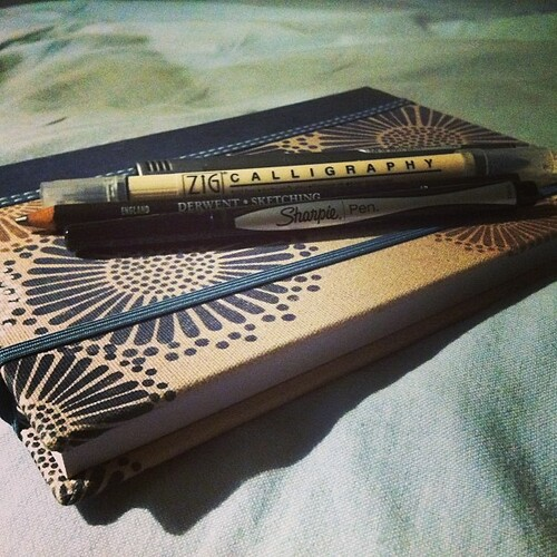 Day 22/365 (2013): My journal & some pens...