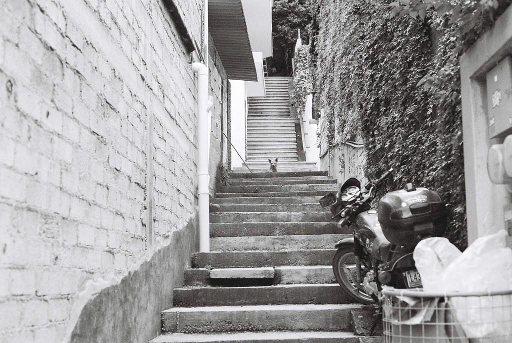 Tuukka13 - 35mm Film - 08/2012 - Sayulita, Mexico - Canon AE-1 & Kodak BW400CN - 000067