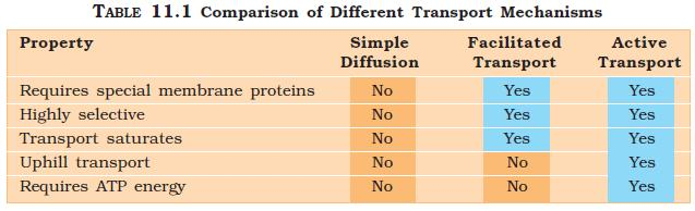 NCERT Class XI Biology: Chapter 11   Transport in Plants Image by AglaSem