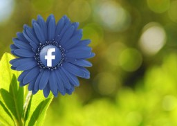 You Won't Believe These 104 Amazing Facebook Stats! (Updated November 2013)