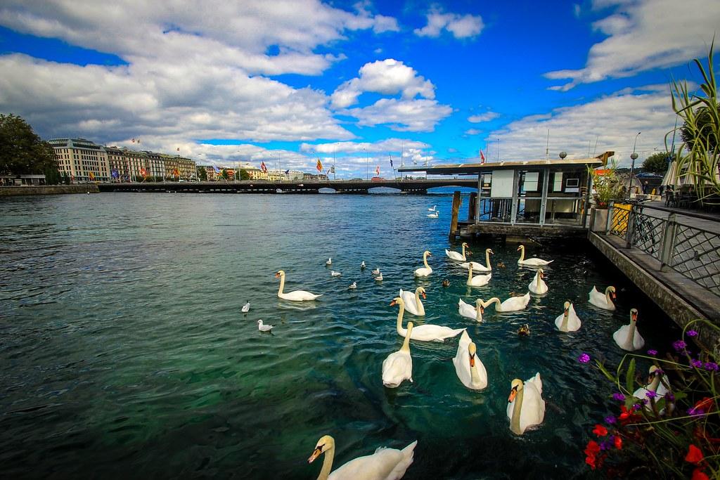 Geneva Lake - Geneva, Switzerland