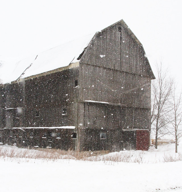 brown barn