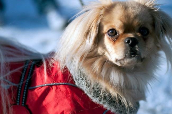 Doris på solig promenad i Nyköping