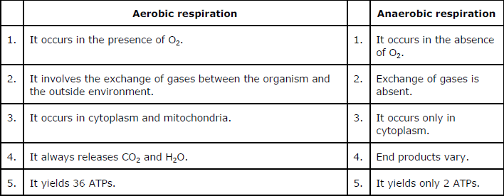 NCERT Solutions for Class 10th Science: Chapter 6 Life Processes Image by AglaSem
