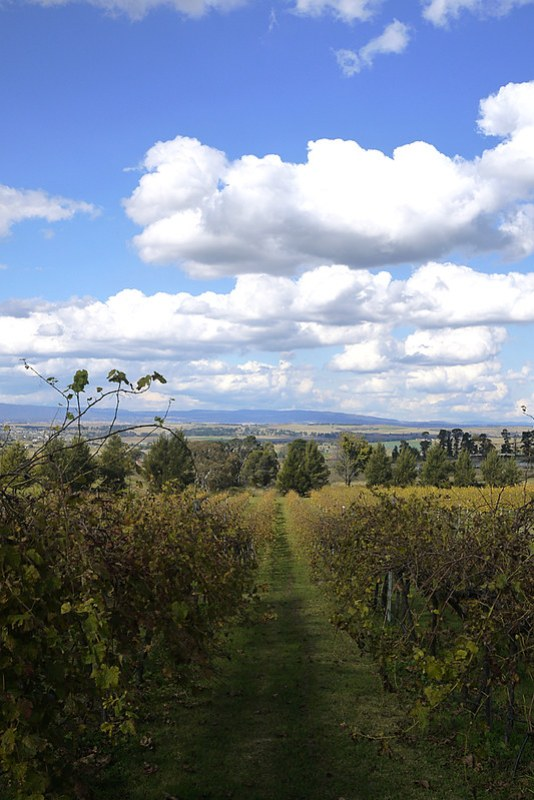 Wanderlust Wednesdays: Bathurst (NSW, Australia)