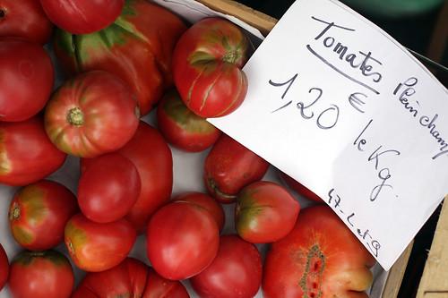 tomatoes plein champs