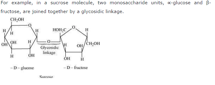 NCERT Solutions for Class 12th Chemistry Chapter 14 Biomolecules Image by AglaSem