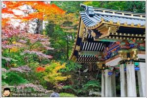 [日本關東楓紅之旅2-2]日光:山內-二荒山神社、輪王寺大猷院