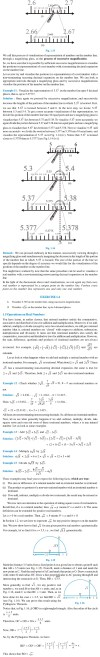 NCERT Class IX Maths Chapter 1 Number Systems Image by AglaSem