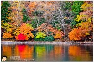 [日本關東楓紅之旅2-5]日光:中禪寺湖遊船