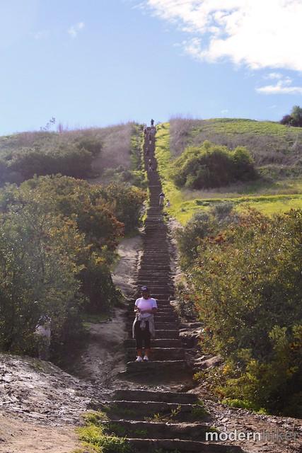 Baldwin Hills Scenic Overlook 9