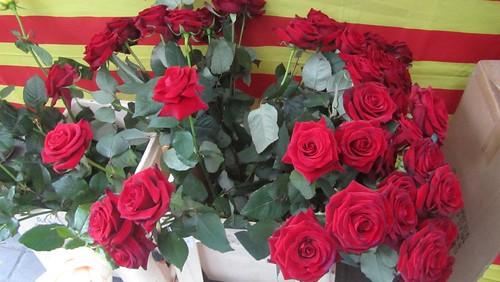 Flores San Jordi