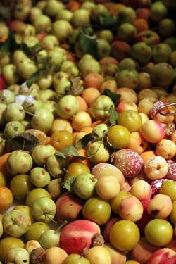 fruits in Israel