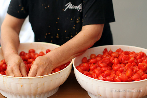 Hands in tomatoes for canning in Italy
