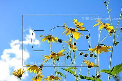 Nikon Df FX vs DX image area full frame sensor use learn manual guide book settings setup