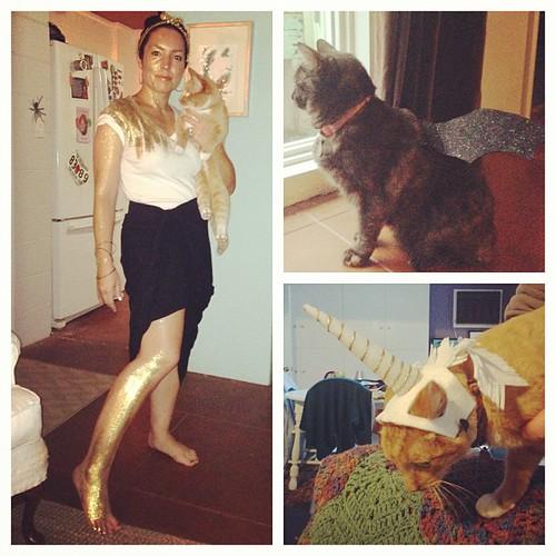 Midas and her extraordinary animals #catcostumesarethebest #halloween