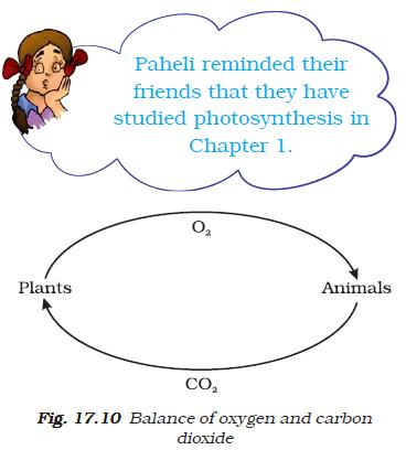NCERT Class VII Science Chapter 17 Our Lifeline