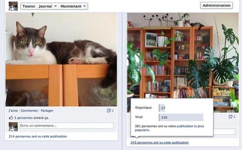 Tounsi Facebook screenshot