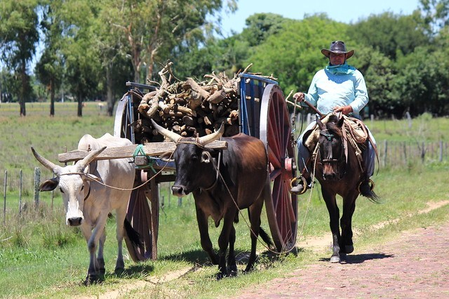 Ruta Pilar-Isla Umbú,Paraguay 20141109
