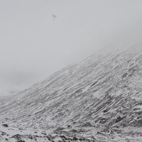 Snow falls from Yumthang valley to Zero point