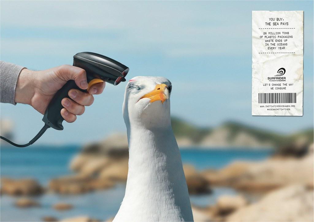 Surfrider Foundation - Barcode Scanner Seagull