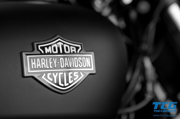 2015 Harley-Davidson Street 750 (14)