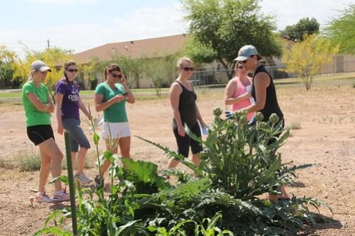 Junior League of Phoenix gardening day