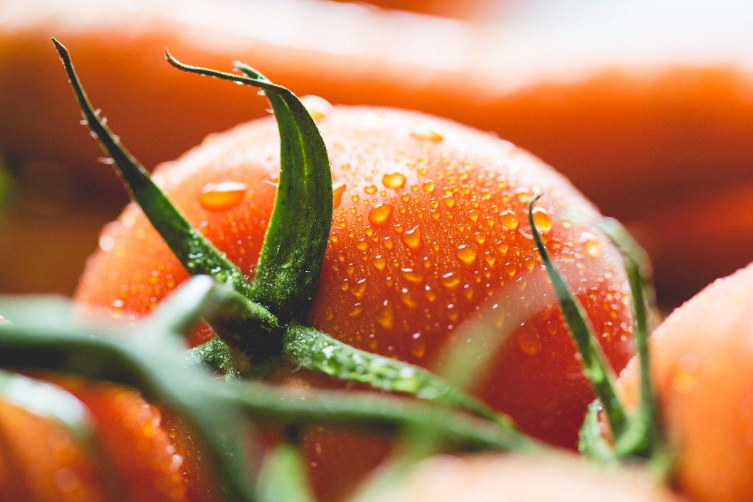 Imagen gratis de un tomate mojado en primer plano