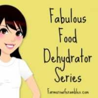 The Fabulous Food Dehydrator Series Part 2: So What Exactly Can You Make?
