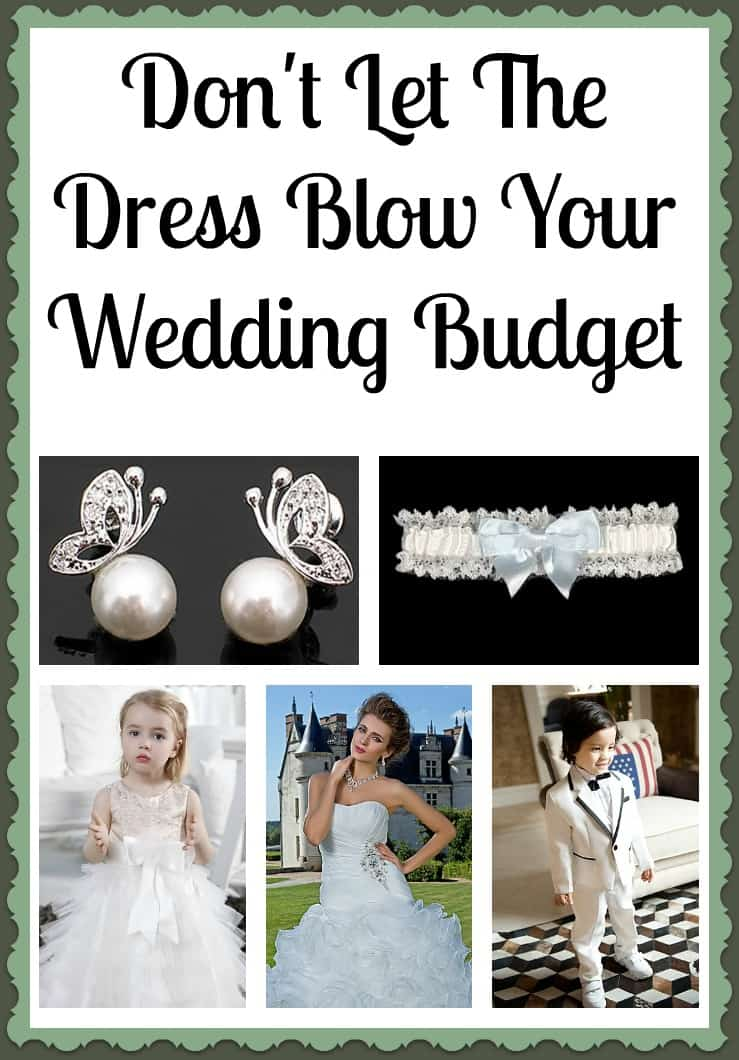 the knot wedding budget
