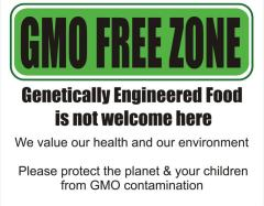 GMO not welcome here