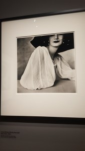 Irving Penn @ Grand Palais, Paris - Sunny Harnett