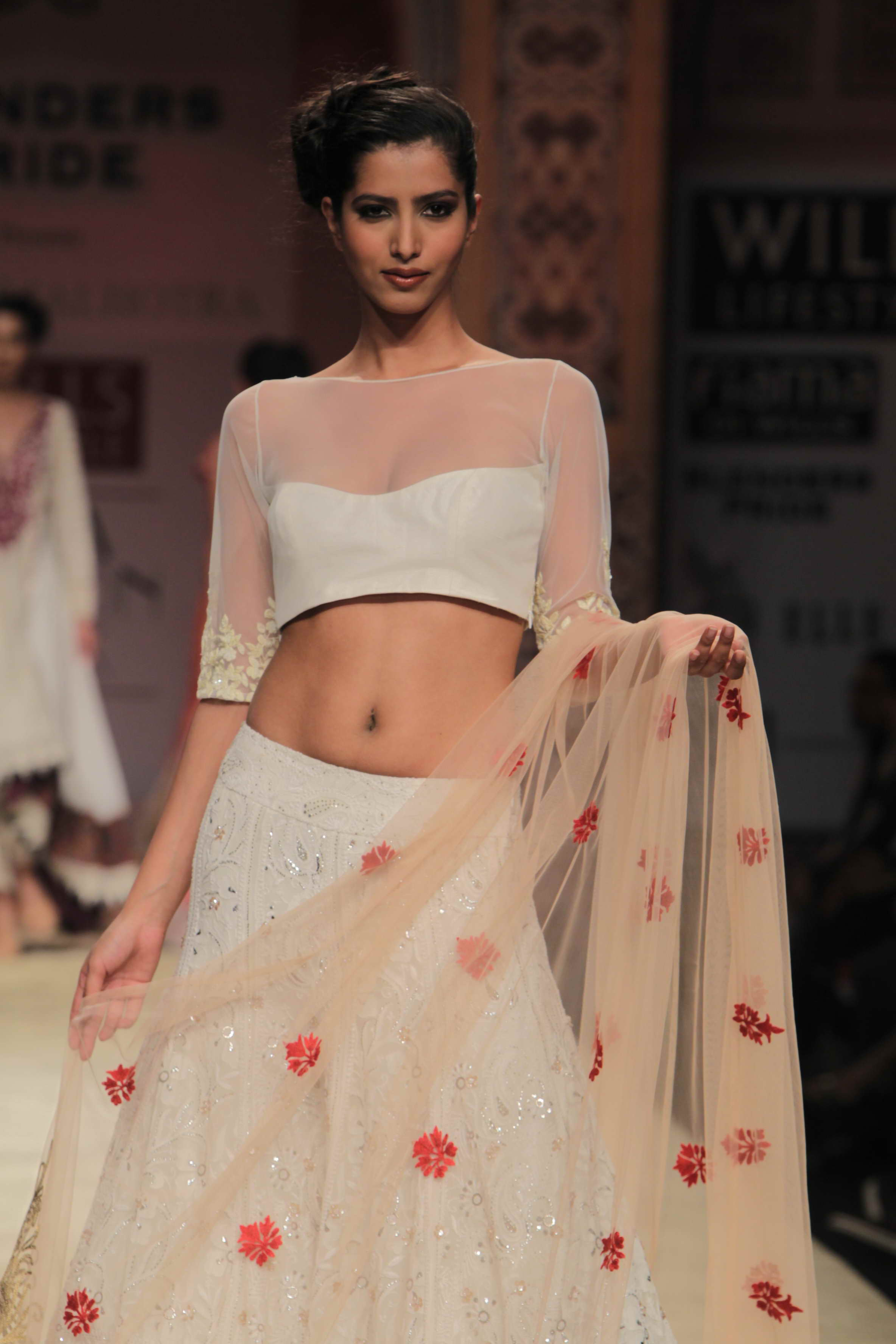 Wills Lifestyle India Fashion Week 2012 Review Part 2