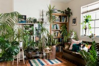 This app helps you choose indoor plants for each room of ...
