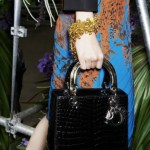 Dior Ready to Wear Fashion Accessories 2014 (4)