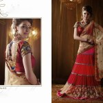 Diwali Special Latest Dresses by Saheli Couture (4)