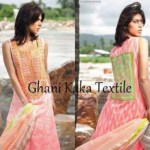Ghani Kaka Textile Embroidery Work Winter Dresses For Women (8)