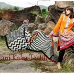 Ghani Kaka Textile Embroidery Work Winter Dresses For Women (9)